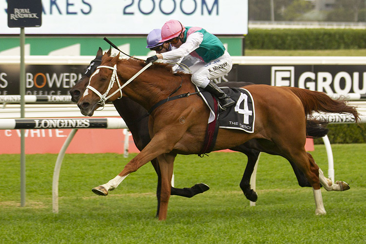 Finche winning the The Agency R/E Kingston Town