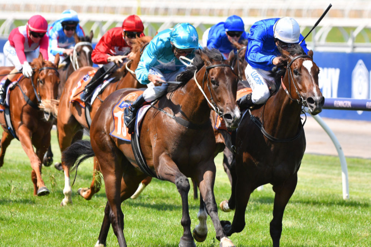 FLIT winning the Tbv Thoroughbred Breeders Stks.