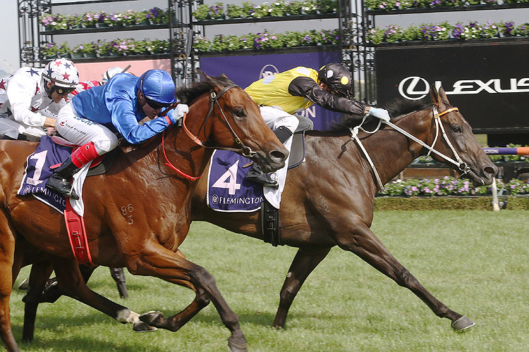 In Her Time winning the Black Caviar Lightning Stakes