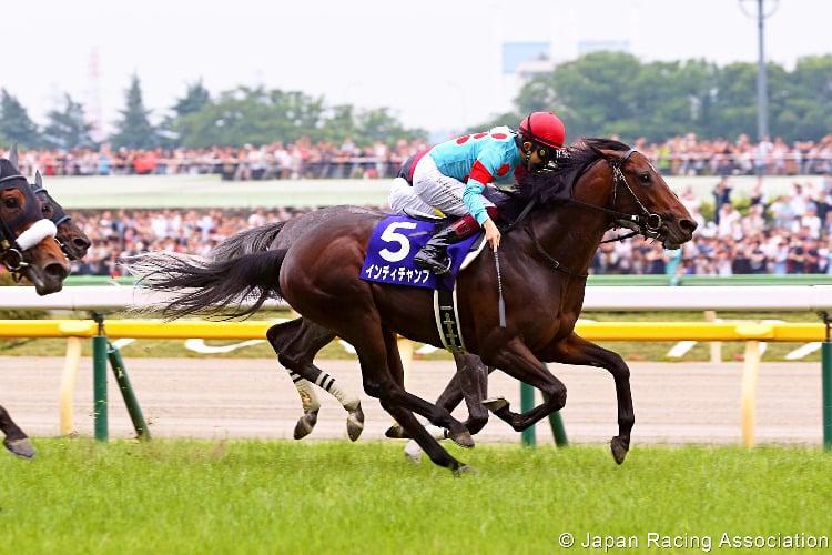 INDY CHAMP winning the Yasuda Kinen at Tokyo in Japan.