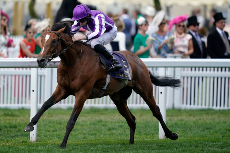 JAPAN winning the King Edward VII Stakes at Ascot in England.