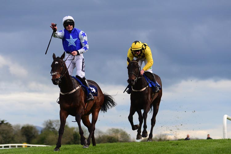 Kemboy winning the Coral Punchestown Gold Cup (Grade 1)