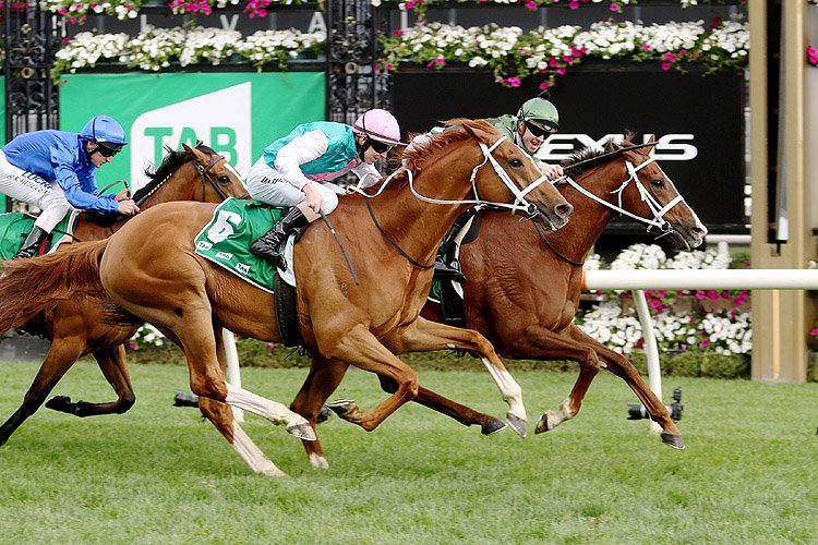Kings Will Dream winning the Tab Turnbull Stakes