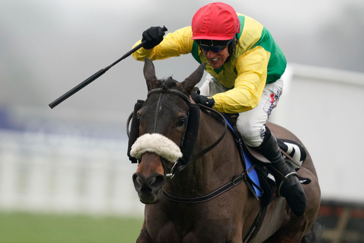 MAGIC OF LIGHT winning the OLBG.com Mares' Hurdle in Ascot, England.