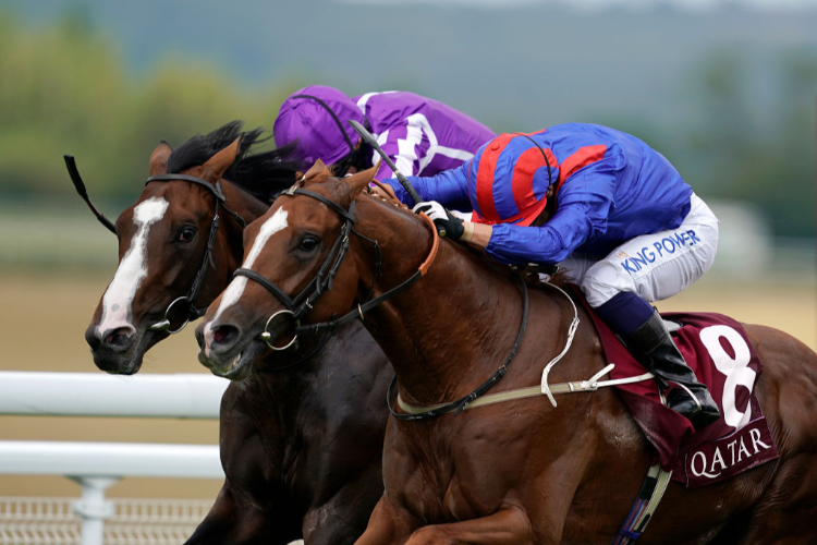 NAYEF ROAD winning the Qatar Gordon Stakes (Group 3) at Goodwood in Chichester, England.