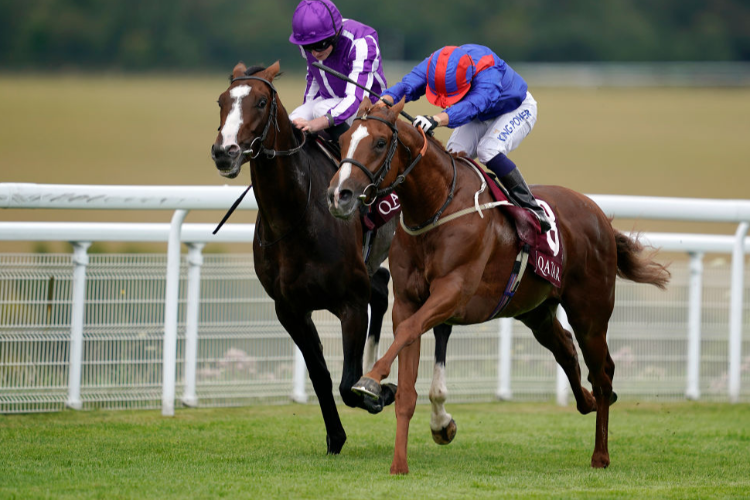 NAYEF ROAD winning the Qatar Gordon Stakes at Goodwood in Chichester, England.