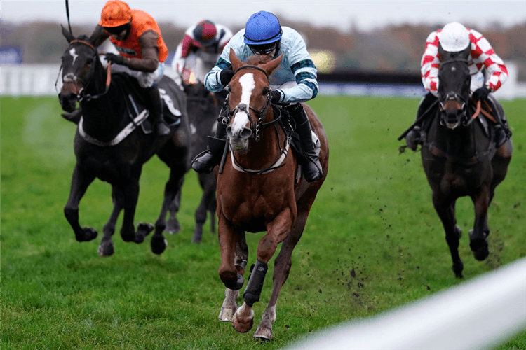 NOT SO SLEEPY winning the Rewarding Ownership With The ROA Handicap Hurdle in Ascot, England.