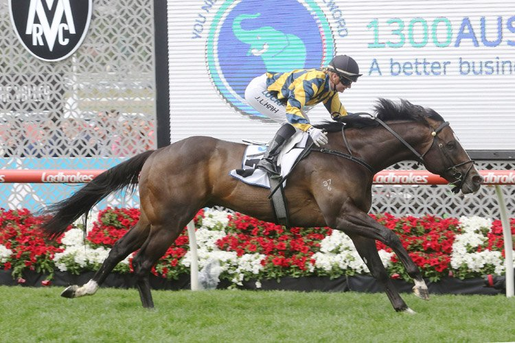 Sartorial Splendor winning the 1300 Australia Stakes