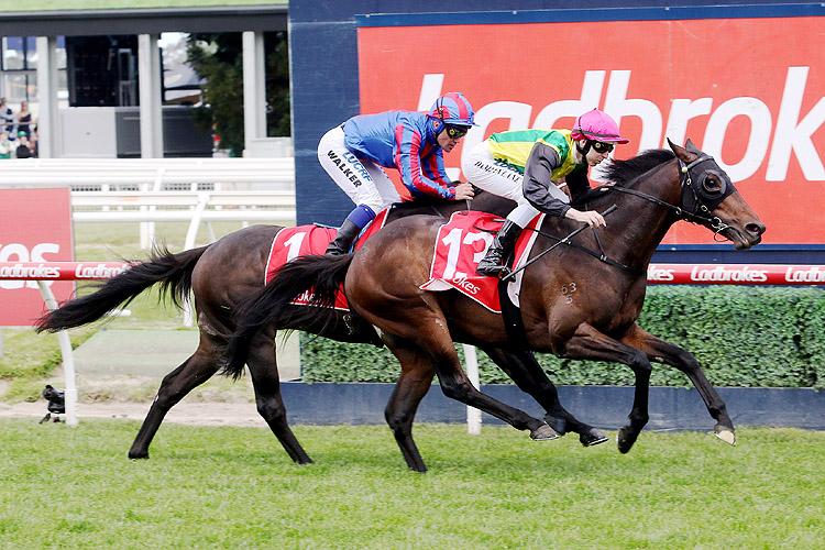 The Chosen One winning the Herbert Power Stakes