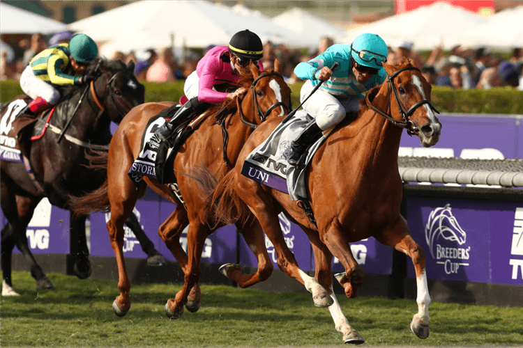 UNI winning the Breeders' Cup Mile at Santa Anita Park in Arcadia, California.