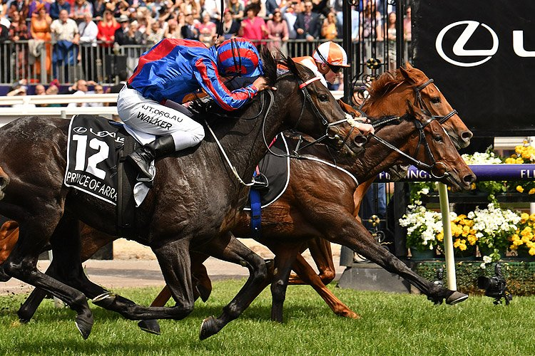 Vow And Declare winning the Lexus Melbourne Cup