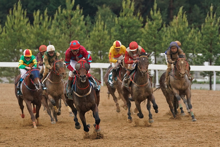 Thoroughbred racing at the Yulong racecourse in the Chinese county of Youyu in the Shanxi Province