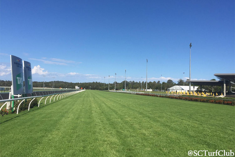 Racecourse : Sunshine Coast.