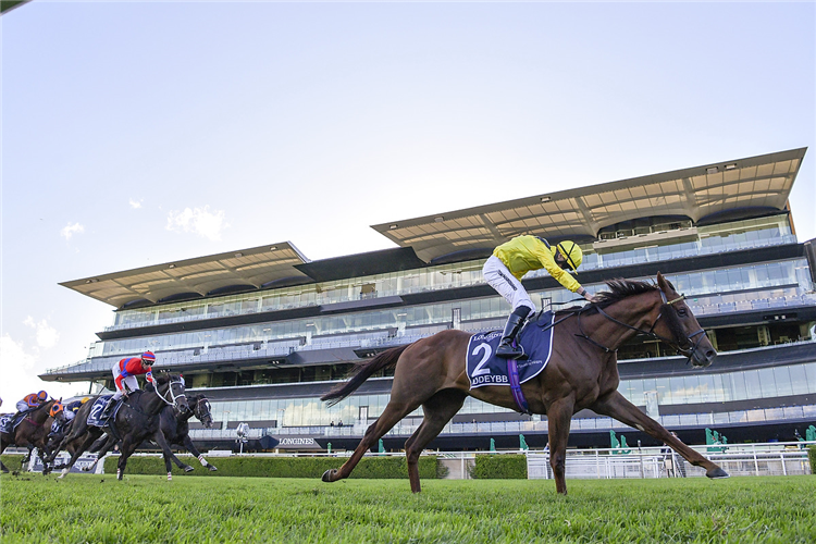 ADDEYBB winning the Longines Queen Elizabeth Stakes.