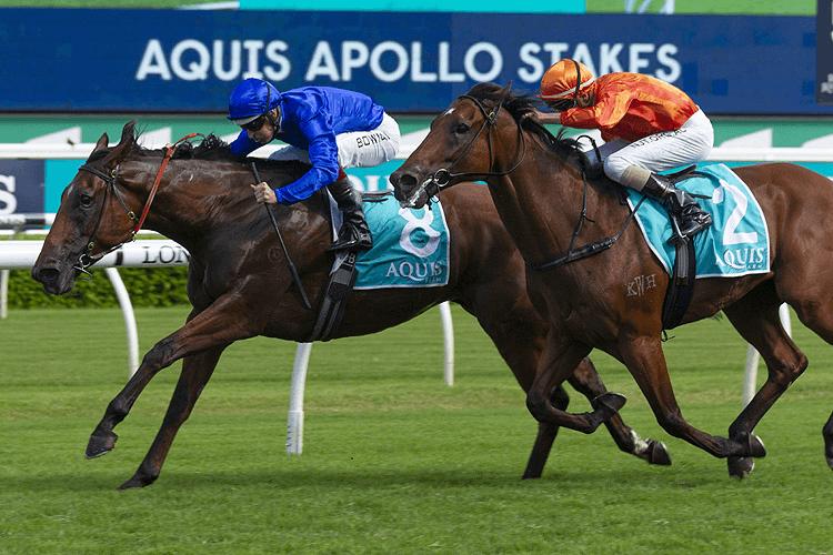 ALIZEE winning the Apollo Stakes.
