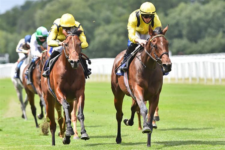 BAARRIJ  winning the Sky Sports Racing 415 Maiden Stakes (Div ll) in Windsor, England.