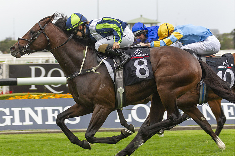 BRANDENBURG winning the Arrowfield Hobartville Stakes