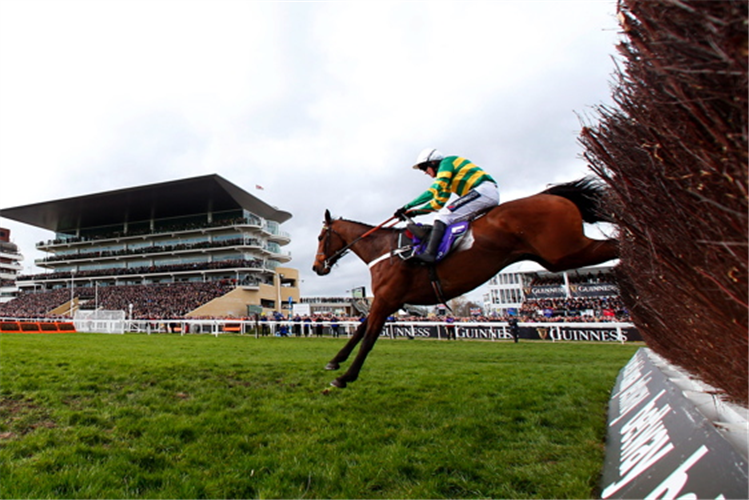 CHAMP winning the RSA Insurance Novices' Chase (Grade 1)