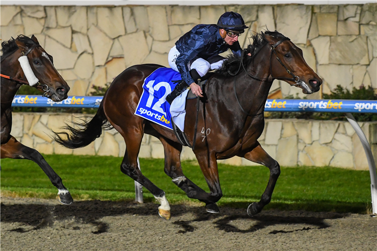 CHEQUERBOARD winning the Ontoit Fillies and Mares Maiden Plate at Racing.com Park Synthetic in Pakenham, Australia.