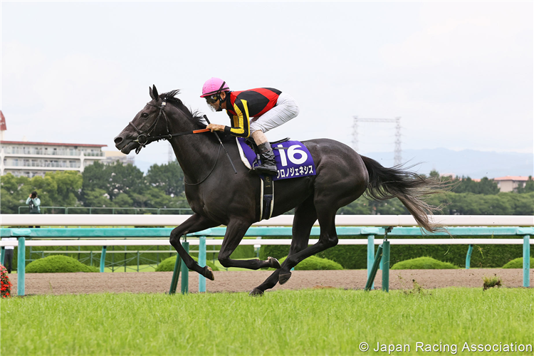 CHRONO GENESIS winning the Takarazuka Kinen at Hanshin in Japan.