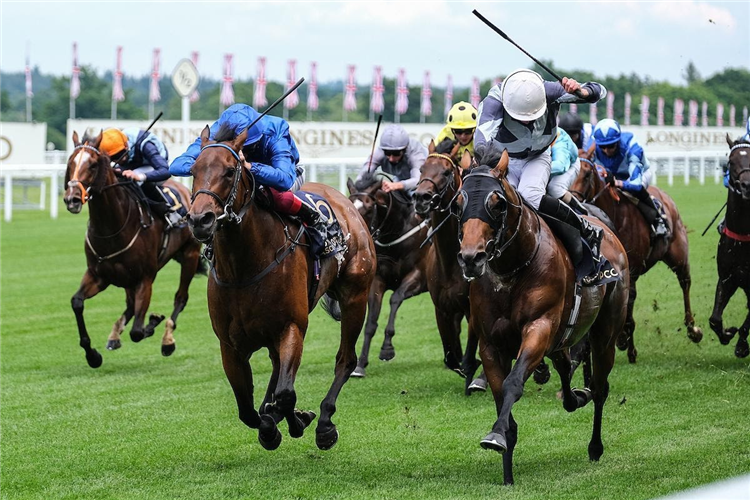 CIRCUS MAXIMUS (right) and TEREBELLUM fight out the finish to the Queen Anne Stakes.