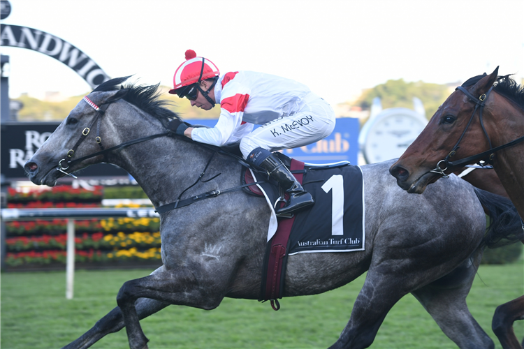 CLASSIQUE LEGEND winning the Bob Charley Ao Stakes (LR).