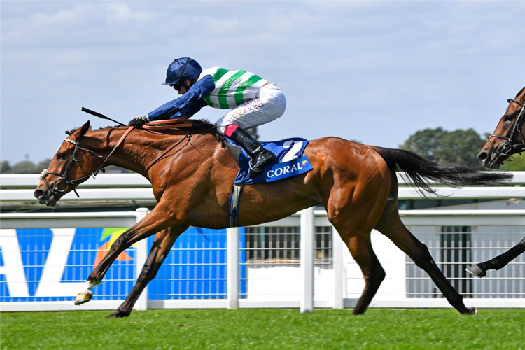 DASHING WILLOUGHBY winning the Coral Henry II Stakes at Sandown Park in Esher, England.