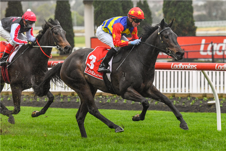 DIRTY THOUGHTS winning the Ladbrokes Switch Hcp.