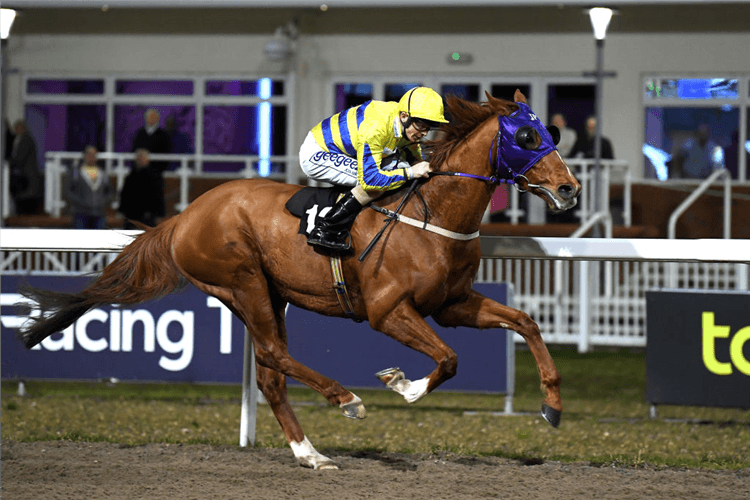 DYAGILEV   winning the Book Tickets online at chelmsfordcity racecourse.com Handicap Stakes at Chelmsford City in Chelmsford, England.