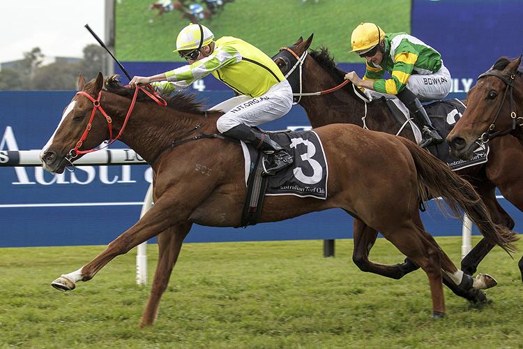 EDUARDO winning the July Sprint