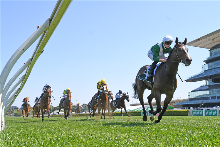 ENTHAAR winning the Keeneland Gimcrack Stakes at Royal Randwick in Australia.