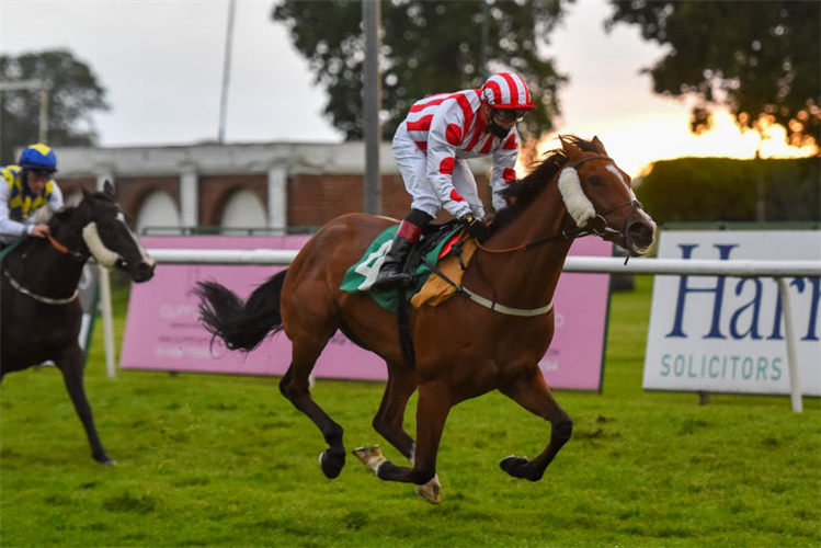 ESSPEEGEE winning the Follow @thirskraces On Twitter Handicap  in Thirsk, England.