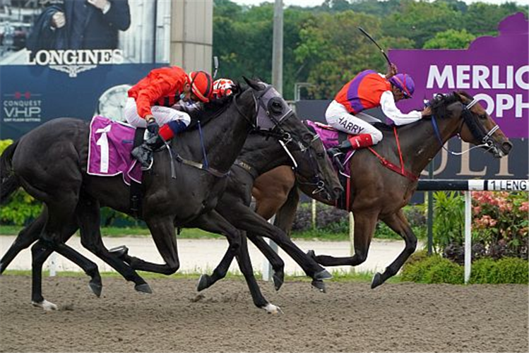 EXCELLING winning the MERLION TROPHY GROUP 2