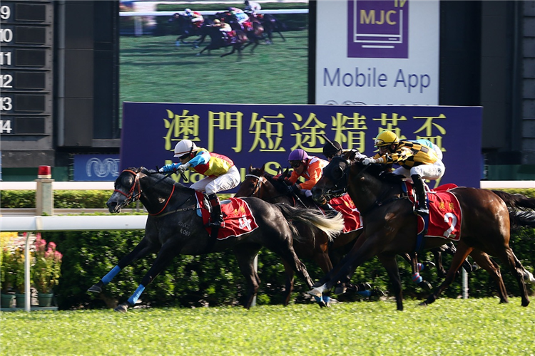 FORTUNE TREASURE winning the MACAU SPRINT TROPHY (GROUP 3)