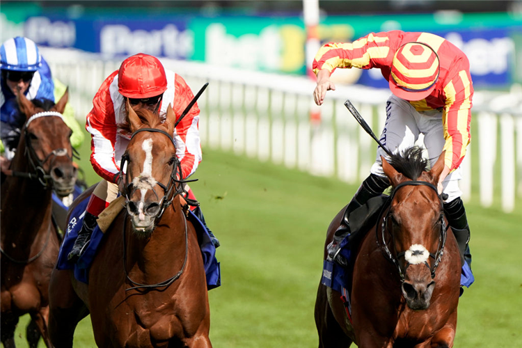 GALILEO CHROME (R) winning the St Leger Stakes at Doncaster in England.