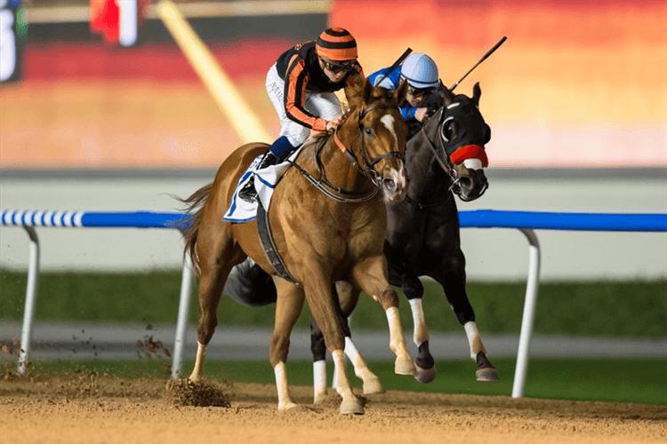 GLADIATOR KING winning the Al Shindagha Sprint Sponsored By DP World UAE Region