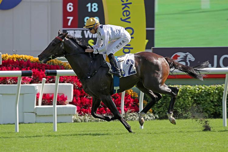 GOLDEN SIXTY winning the The Jockey Club Mile
