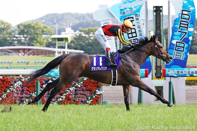 GRAN ALEGRIA winning the Yasuda Kinen at Tokyo in Japan.