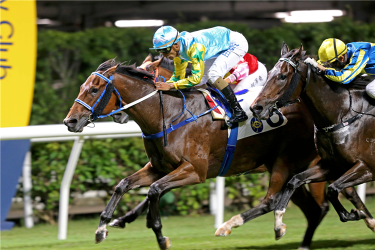HERE COMES TED winning the Mount Kellett Hcp (C4)