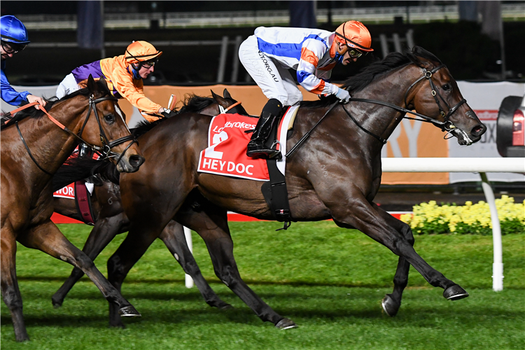 HEY DOC winning the Manikato Stakes at Moonee Valley in Australia.