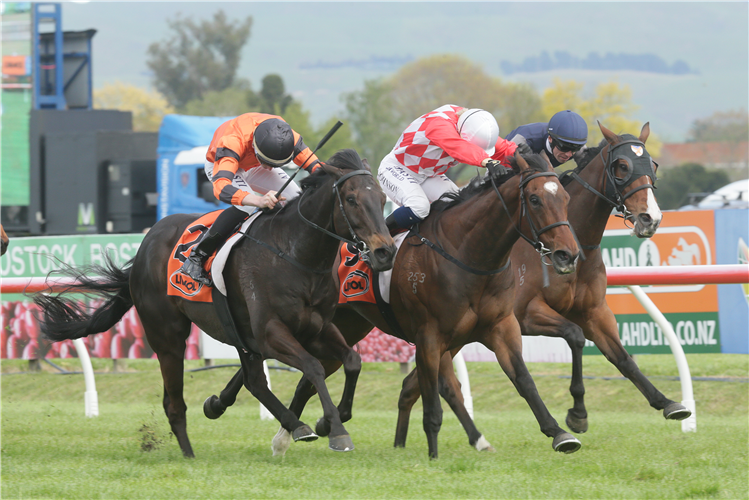 Hypnos (middle) holds out Rock On Wood (outer) and Vigor Winner (inner) to win the Gr.3 Red Badge Spring Sprint (1400m) at Hastings