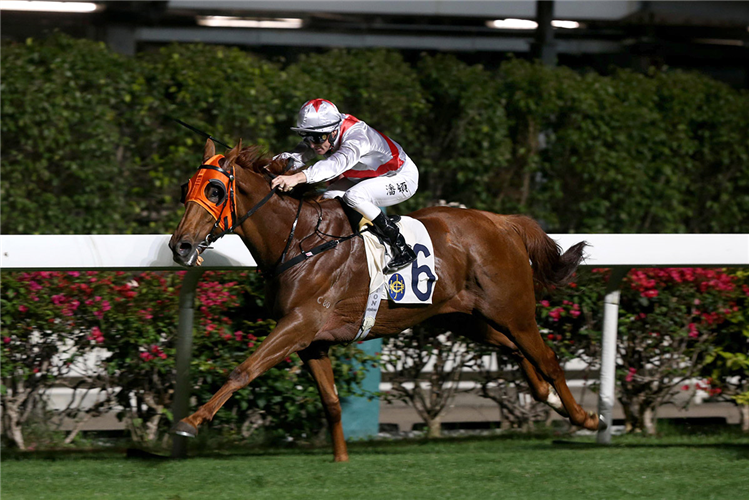 JOLLY HONOUR winning the Po Chong Wan Hcp (C3)