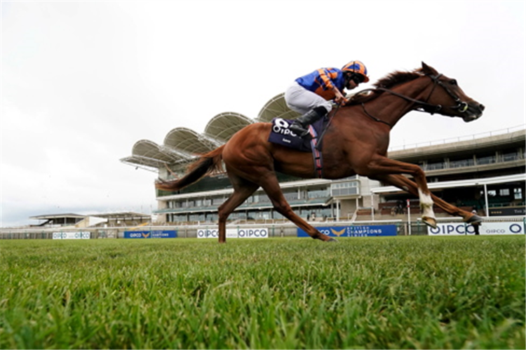 LOVE winning the Qipco 1000 Guineas Stakes (Fillies' Group 1)