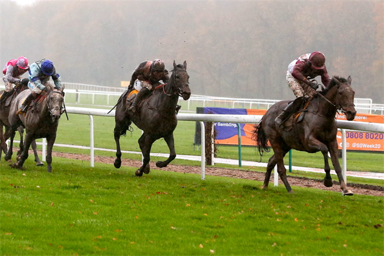 MAIN FACT winning the Betfair Exchange Stayers' Handicap Hurdle (Grade 3)
