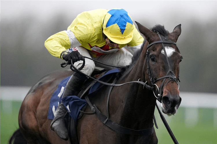 MAIRE BANRIGH  win thePertemps Lady Protectress Mares' Chase  in Huntingdon, England.