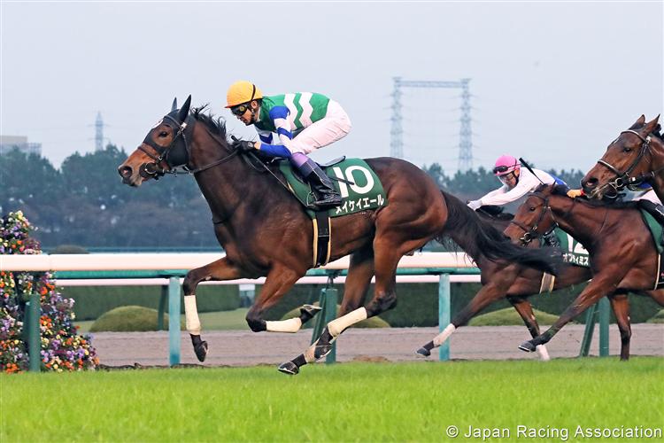 MEIKEI YELL winning the Fantasy Stakes at Hanshin in Japan.