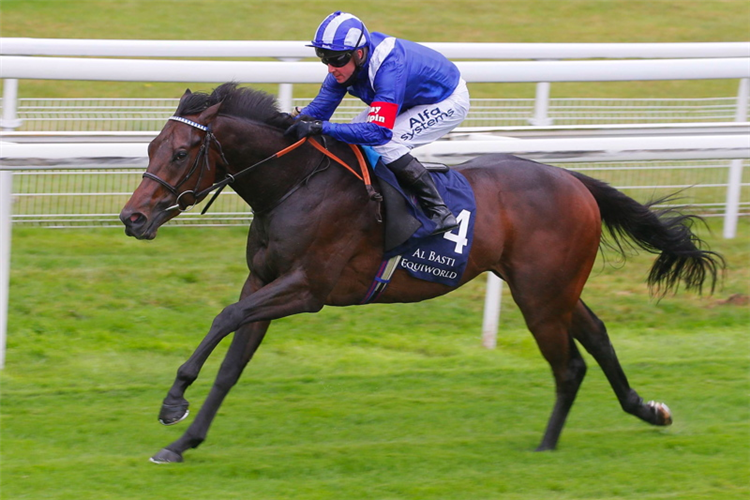 MINZAAL winning the Gimcrack Stakes at York in England.