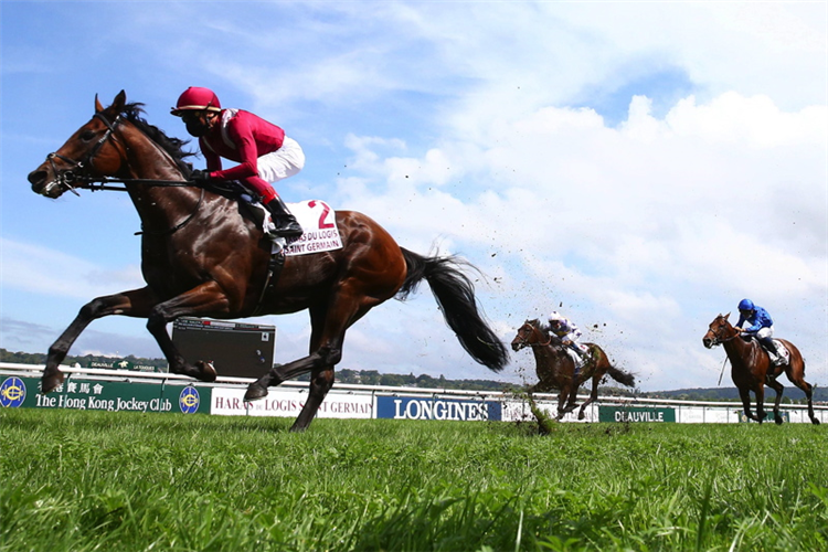 MISHRIFF winning the Prix Guillaume D'ornano - Haras Du Logis Saint-Germain at Deauville in France.
