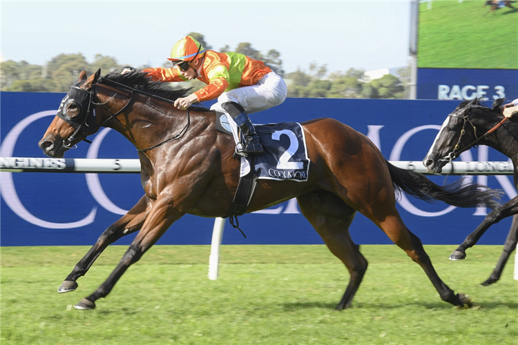 MO'S CROWN winning the Magna Grecia At Coolmore.