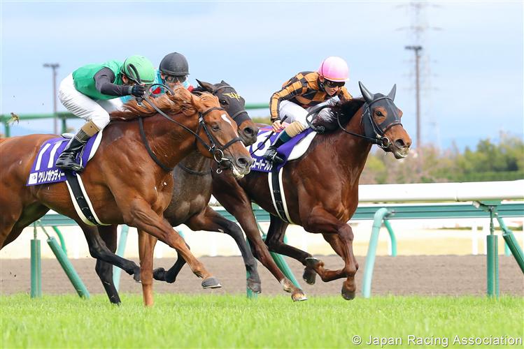 MOZU SUPERFLARE winning the Takamatsunomiya Kinen in Chukyo, Japan.